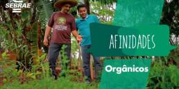 Produtos orgânicos, empresas sustentáveis
