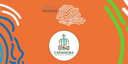 Banner Origens Paraná Melado de Capanema