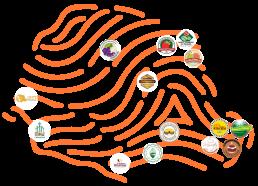 Mapa Origens Paraná