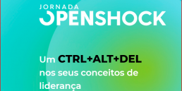 Jornada OpenShock